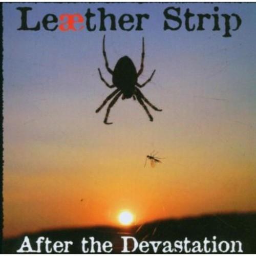 After the Devastation