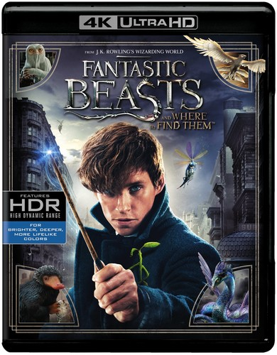 Fantastic Beasts and Where to Find Them [4K Ultra HD Blu-ray/Blu-ray]