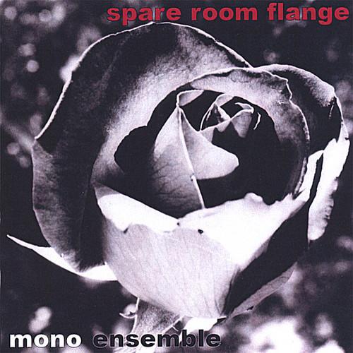 Spare Room Flange