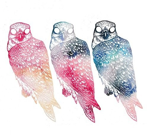 Flyying Colours - Mindfullness