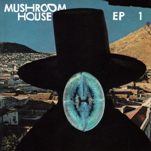 Mushroom House /  Various