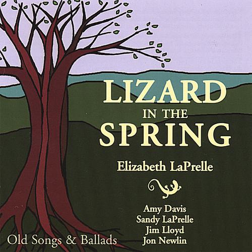 Lizard in the Spring