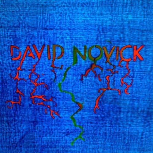 David Novick