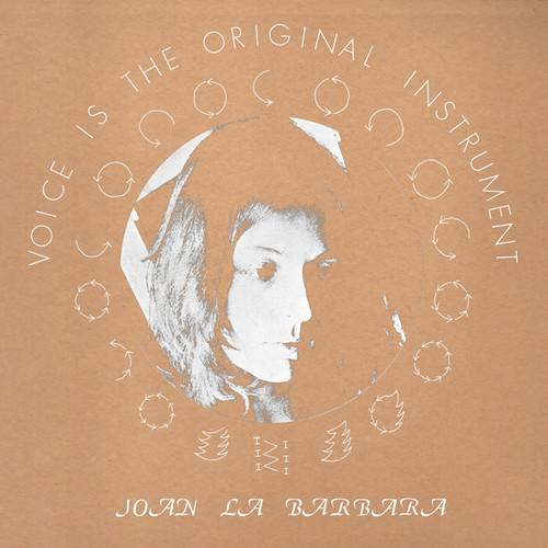 Voice Is The Original Instrument