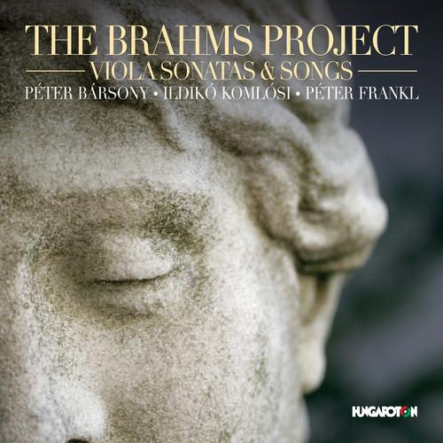 Brahms - Brahms Project