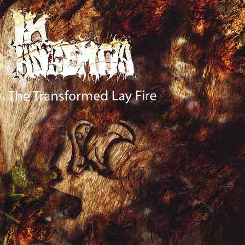 Transformed Lay Fire