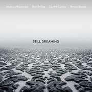 Still Dreaming , Joshua Redman