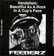 Vandalism: Beautiful As a Rock in a Cops Face