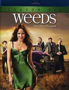 Weeds: Season 6 , Elizabeth Perkins