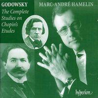 L. GODOWSKY - Godowsky: Complete Studies On Chopin's Etudes
