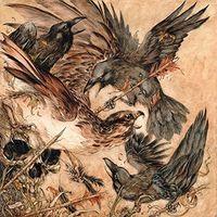 Valkyrie - Shadows [Vinyl]