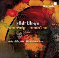 Markus Schafer - Sommersneige / Summer's End