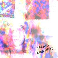Katie Dey - Flood Network [Colored Vinyl]