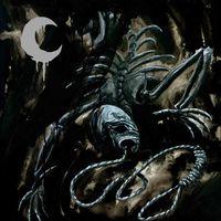 Leviathan - A Silhouette in Splinters