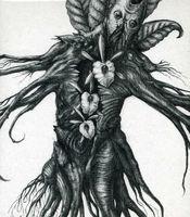 Botanist - Iv: Mandragora