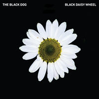 Black Dog - Black Daisy Wheel