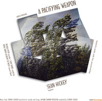 MICHALA PETRI - Sean Hickey: A Pacifying Weapon