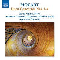 Jacek Muzyk - Horn Concertos
