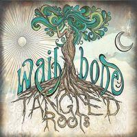 Gabriella Callender - Tangled Roots