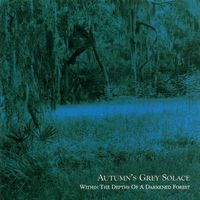 Autumn's Grey Solace - Within the Depths of a Darkened Forest