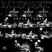 David Tudor - Rainforest Versions 1 and 4