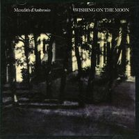 Meredith D'Ambrosio - Wishing on the Moon
