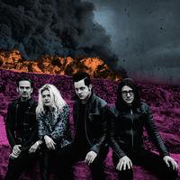 The Dead Weather - Dodge & Burn [Vinyl]