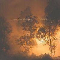 Mandolin Orange - Blindfaller [Vinyl]