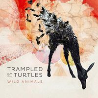 Trampled By Turtles - Wild Animals [Vinyl]