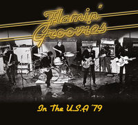 Flamin' Groovies - In the U.S.A '79