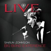 Shaun Johnson Big Band Experience - Live