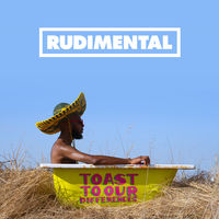 Rudimental - Toast To Our Differences [2LP]