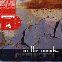 In The Woods - Live at the Caledonien Hall