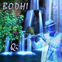 Bodhi - Qi
