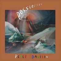 Peter Davison - Possibility