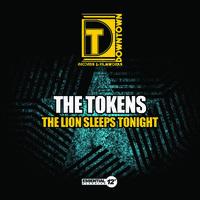 Tokens - Lion Sleeps Tonight
