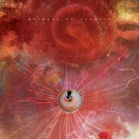 Animals As Leaders - Joy of Motion
