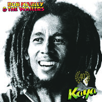 Bob Marley & The Wailers - Kaya 40 [2LP]