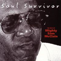 Mighty Sam Mcclain - Soul Survivor: Best of Mighty