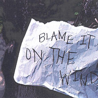 Blame It On The Wind - Blame It On The Wind