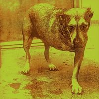 Alice In Chains - Alice In Chains (Gold Series) (Aus)