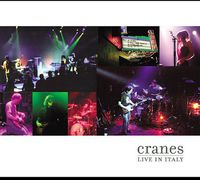 Cranes - Live in Italy