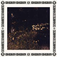 Sarah Davachi - Pale Bloom