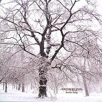 Snowblind - Arctic Fury