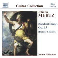 Adam Holzman - Bardenklange Op 13: Bardic Sounds