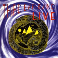 Third Ear Band - Third Ear Band Live [Import]