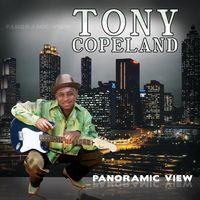 Tony Copeland - Panoramic View