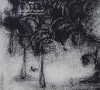 William Basinski - Silent Night