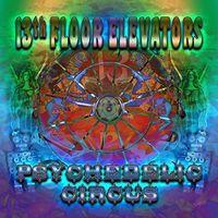The 13th Floor Elevators - Psychedelic Circus