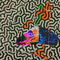 Animal Collective - Tangerine Reef [2LP]